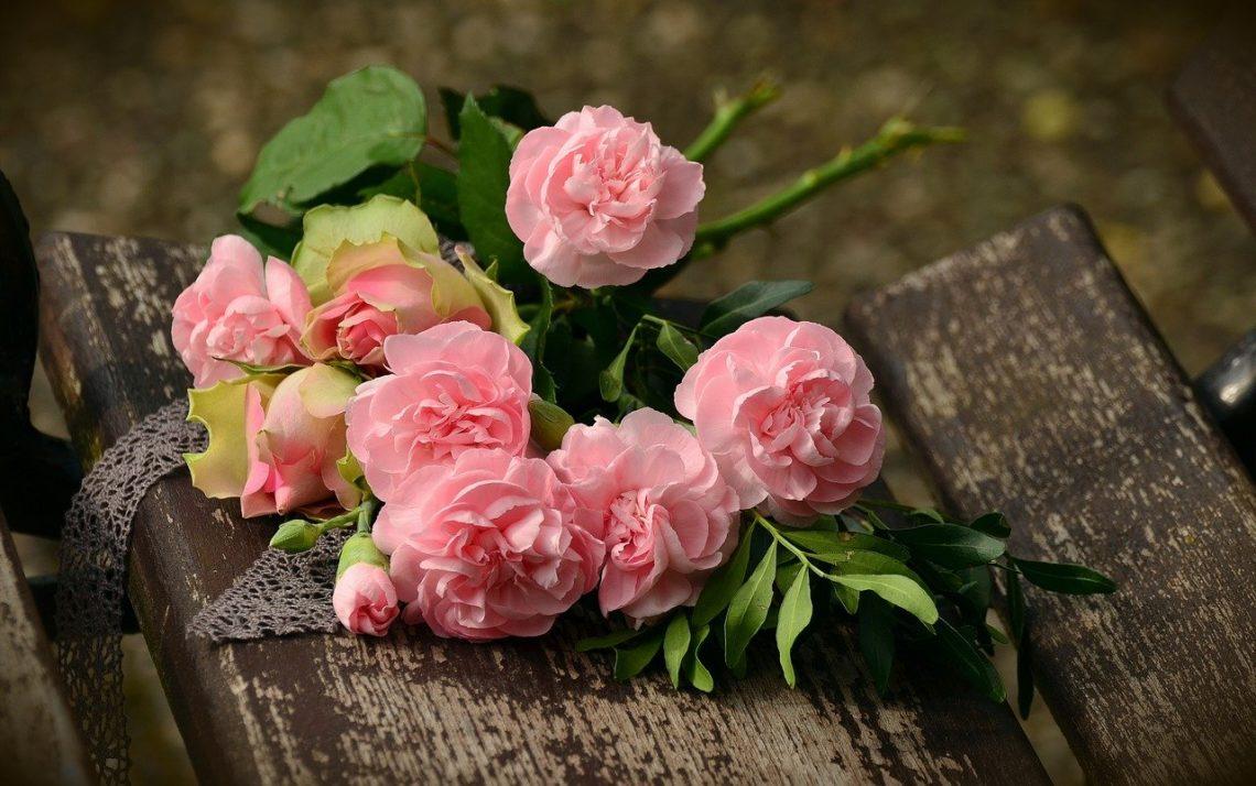 Różowe róże na drewnianej ławce