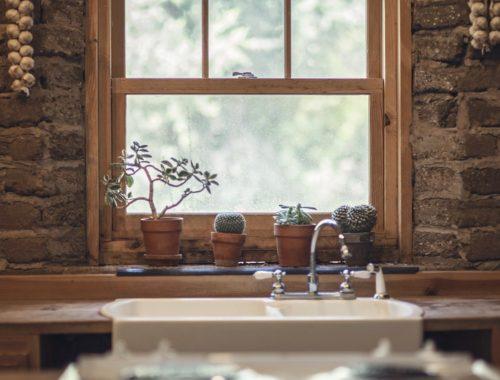 Widok na dom i okno, na parapecie kaktusy i czosnek